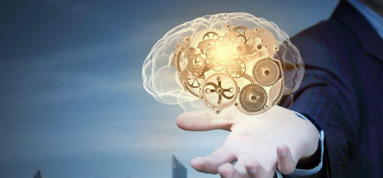 Le neuro-management au service de la performance commerciale